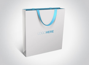 Exquisite-bag-free-psd