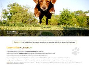 GOLDENDAY-Landing-Page-V2